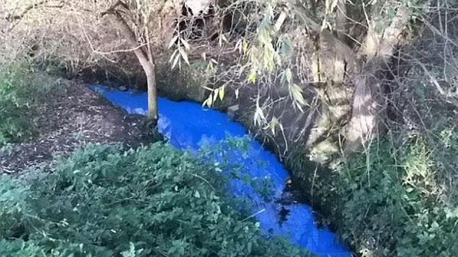 Sắc xanh bí ẩn của dòng Ouse ở Anh đang khiến nhiều nhà khoa học đau đầu