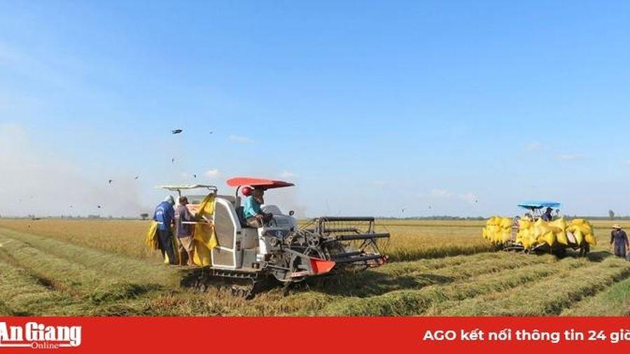 Phú Tân phấn đấu hoàn thành nhiệm vụ 'Năm nông nghiệp'