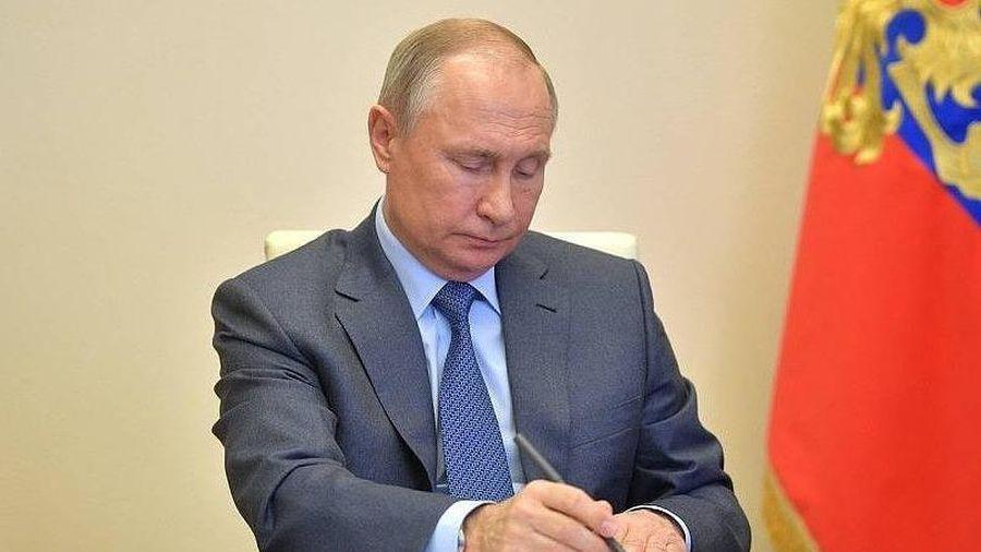 Nga lên tiếng về thông tin Tổng thống Putin được đề cử giải Nobel Hòa bình