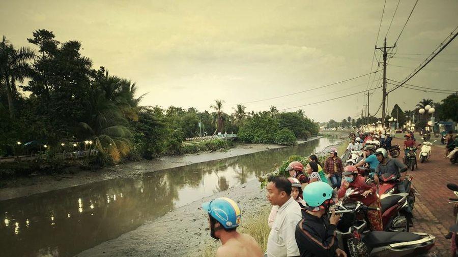 Thông tin cá sấu xuất hiện trên sông Sài Gòn là không có thật