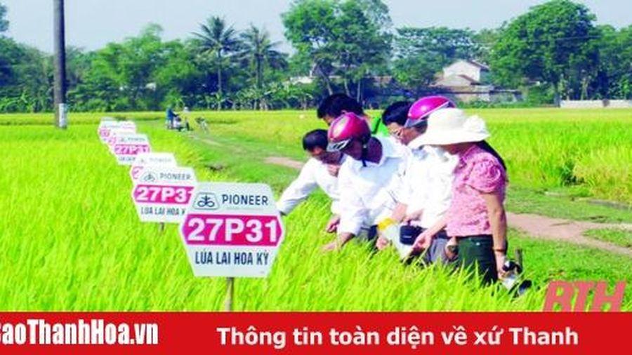 Nâng cao chất lượng nguồn nhân lực trong sản xuất nông nghiệp