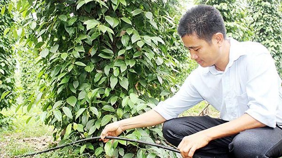 Ứng dụng công nghệ cao Israel vào nông nghiệp