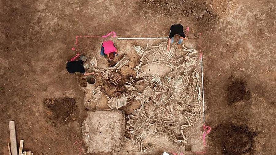 Bí ẩn địa vị chủ nhân ngôi mộ cổ 1.500 tuổi ở Đức
