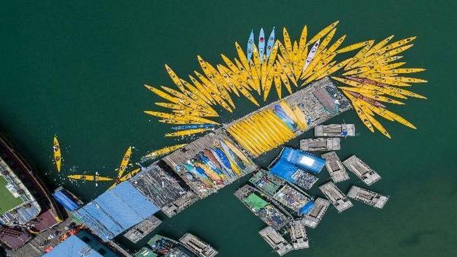 Hải Phòng công bố các cụm điểm neo đậu cho tàu lưu trú qua đêm