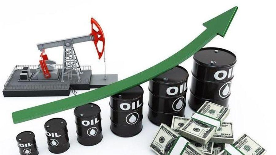 Giá xăng dầu hôm nay 25/9: Xu hướng tăng mạnh