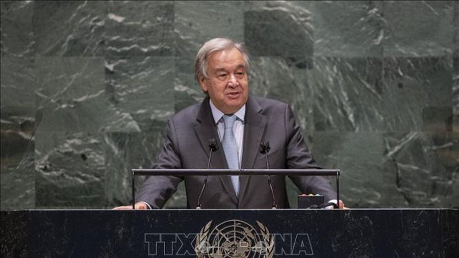 Tổng thư ký LHQ kêu gọi thế giới hành động ngay ứng phó với biến đổi khí hậu