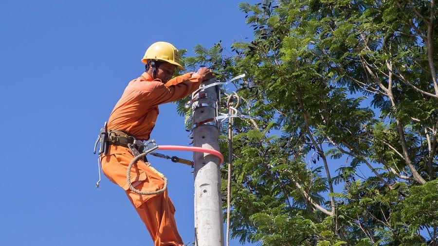 'Thanh tra toàn diện mới biết vì sao cột điện bị gãy'