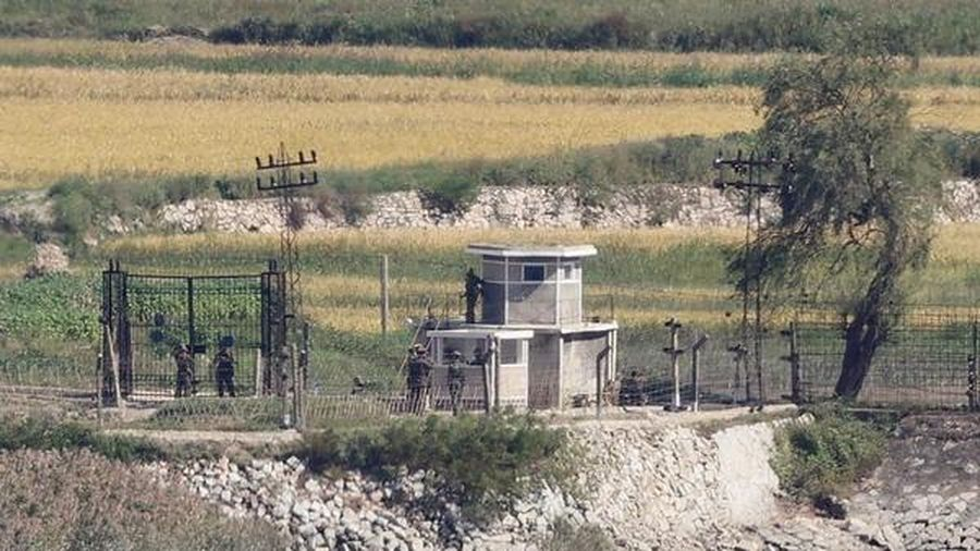 Hàn Quốc muốn Triều Tiên điều tra chung về cái chết của công dân