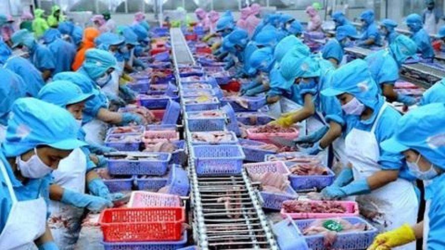 Đài Loan 'mở cửa' cho 25 cơ sở chế biến thủy sản Việt Nam xuất khẩu
