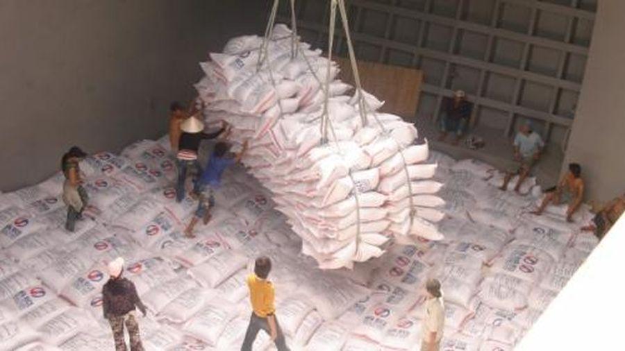 Giá gạo xuất khẩu giảm mạnh do Philippines ngừng mua