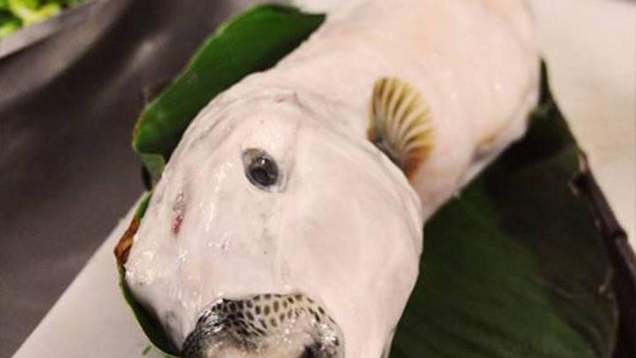 Món cá mặt thỏ đắt đỏ có độc như thế nào?