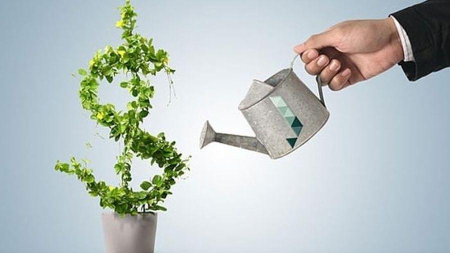 Đầu tư ra nước ngoài: Bổ sung điều kiện đối với kinh doanh bất động sản, báo chí