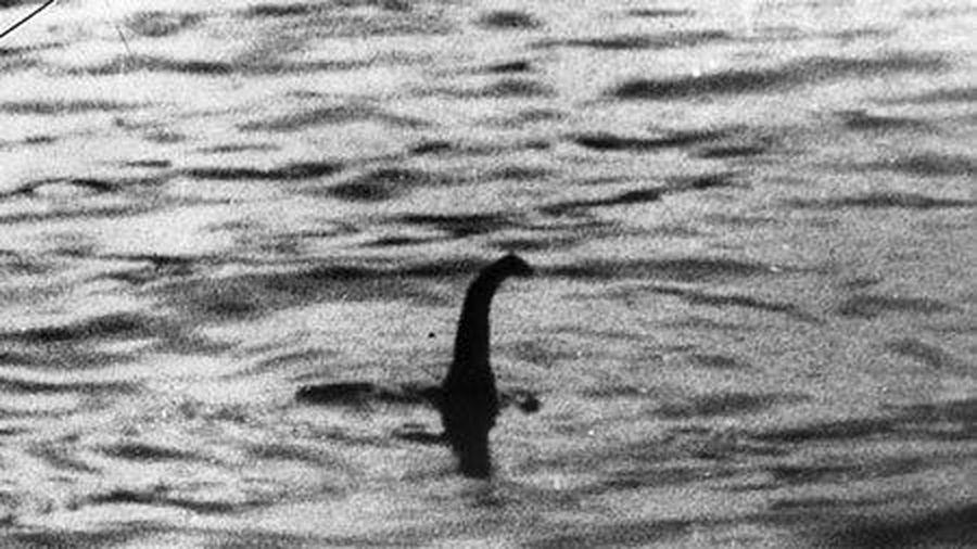 Thủy quái hồ Loch Ness 'tái xuất'?