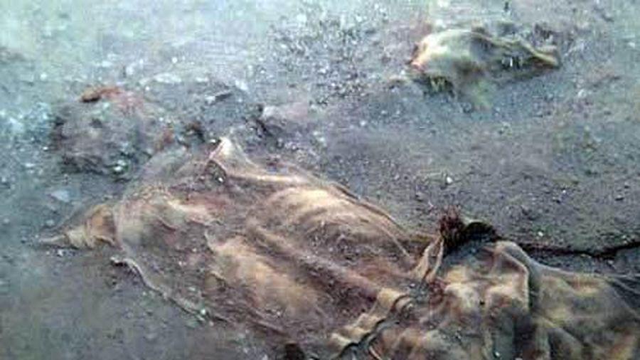 Bí ẩn về xác ướp của những 'người muối' ở Iran