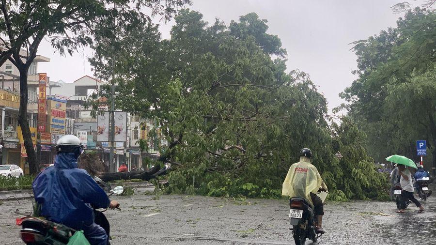 Dự báo thời tiết ngày 27/9: Cảnh báo mưa rào và dông, sét trên cả nước