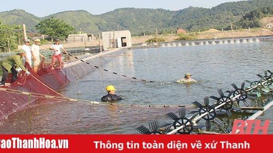 Đảng bộ xã Hòa Lộc nâng cao chất lượng sinh hoạt chi bộ