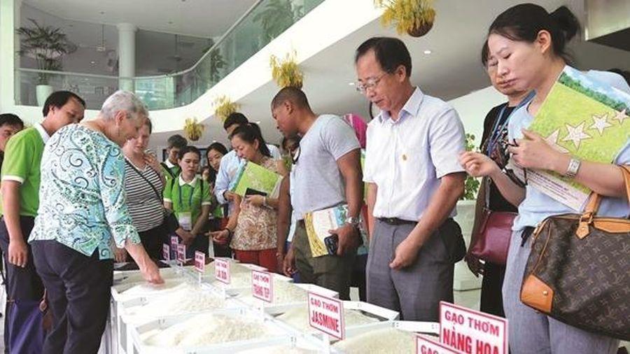 'Visa EVFTA' cho gạo Việt