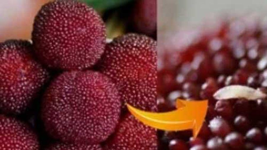 5 loại trái cây chứa nhiều ký sinh trùng, không rửa sạch trước khi ăn là 'rước họa'