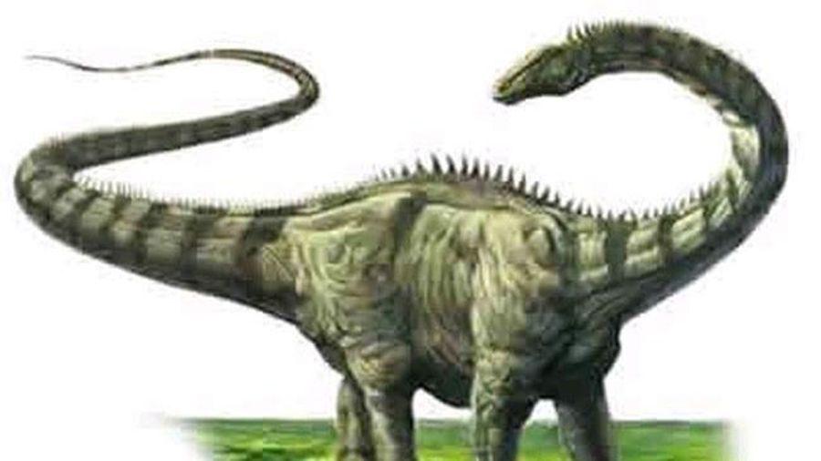 Vì sao khủng long to lớn như vậy?