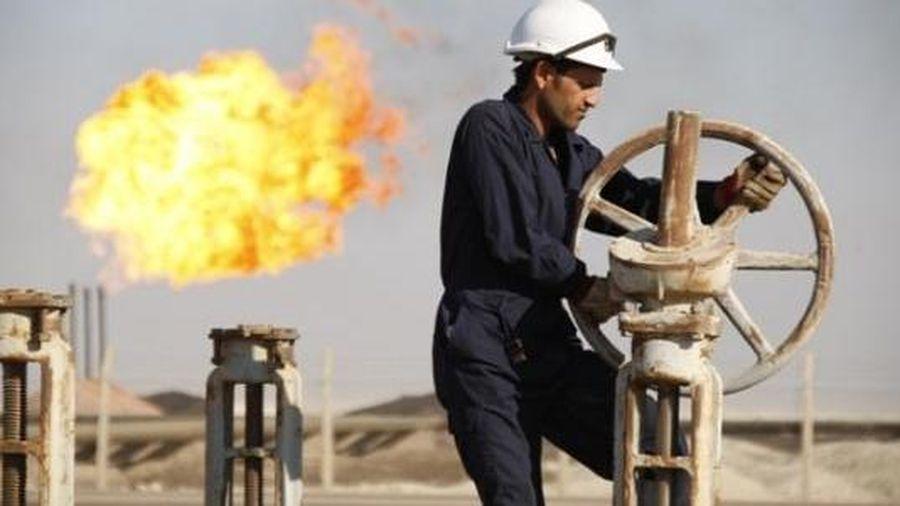 Giá dầu thô giảm trở lại, một số quốc gia tái áp đặt các biện pháp hạn chế di chuyển