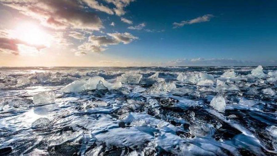 15 sự thật bí ẩn về Bắc Cực con người chưa từng biết tới