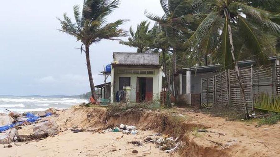 Kiên Giang: Triển khai kế hoạch thực hiện Đề án phòng, chống sạt lở bờ sông, bờ biển