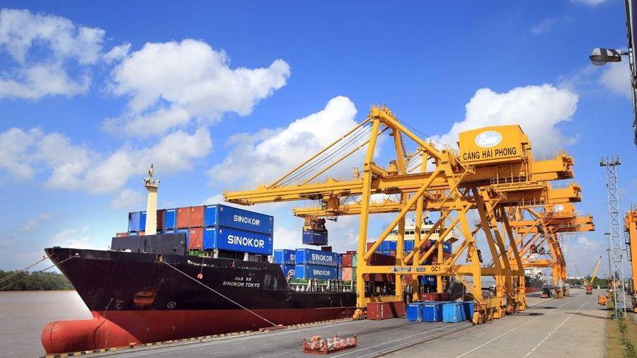Cục Xuất Nhập khẩu: Đóng góp quan trọng vào tăng trưởng kinh tế