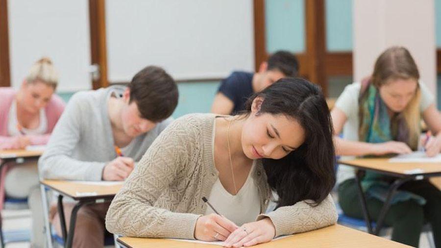 Thực đơn 'tiếp sức' cho não bộ, giúp bạn ứng phó với 1001 kiểu bài kiểm tra