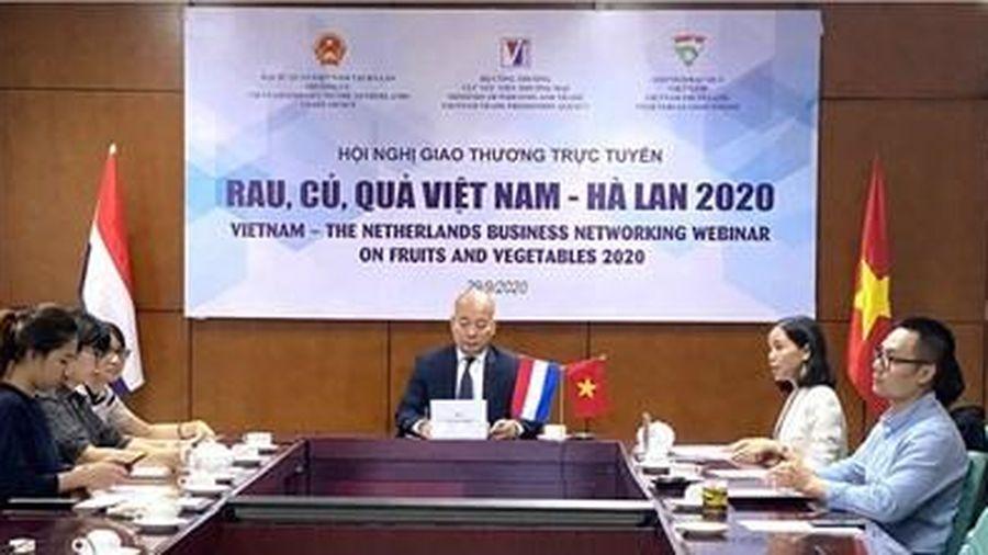 Cơ hội quảng bá về rau, củ, quả Việt Nam với thị trường Hà Lan