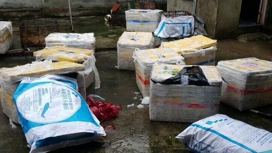 Hà Giang phát hiện gần 1,2 tấn sủi cảo, chả cá không rõ nguồn gốc