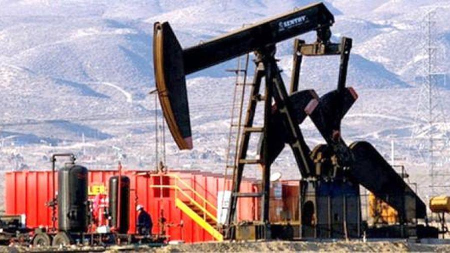 Giá dầu cũng bị 'nhiễm Covid-19'