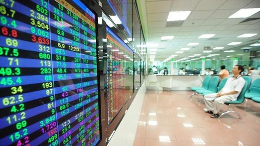 Phạt 2 cổ đông DTL và NLG do sai phạm trong giao dịch chứng khoán