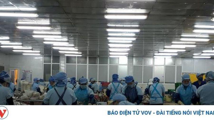 Từ nghề vá lưới thuê thành ông chủ doanh nghiệp thủy sản 'tầm cỡ' ở Đà Nẵng
