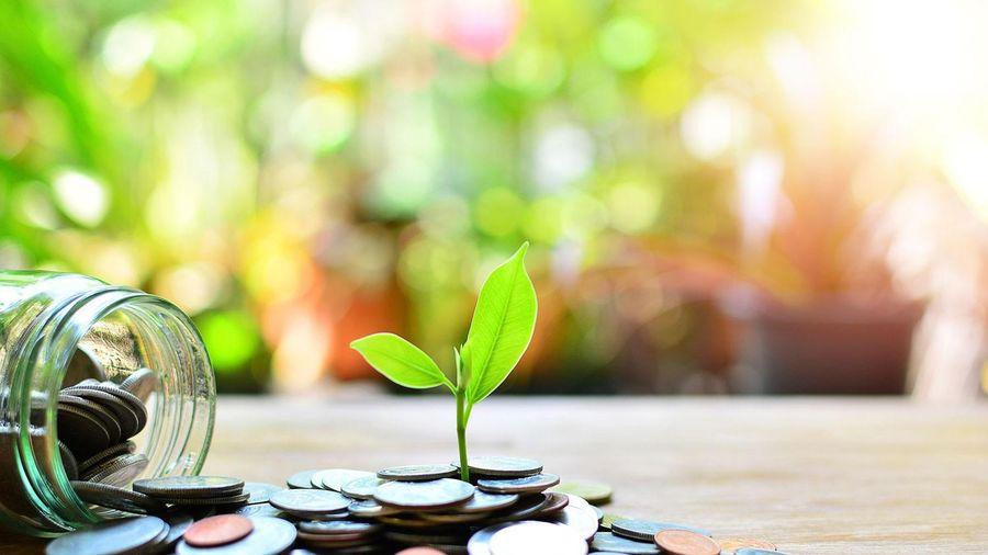 Nhận định thị trường phiên giao dịch chứng khoán ngày 1/10: Chờ nhịp điều chỉnh giúp giá chiết khấu tốt hơn