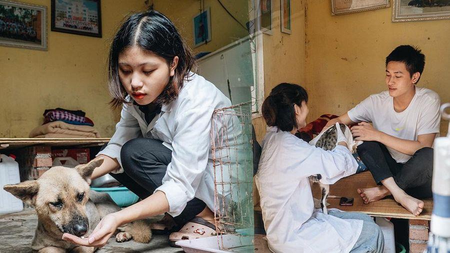 Trạm cứu hộ chó, mèo của các bạn sinh viên ở Hà Nội: 'Chúng mình luôn sẵn sàng khi có cuộc gọi khẩn cấp'