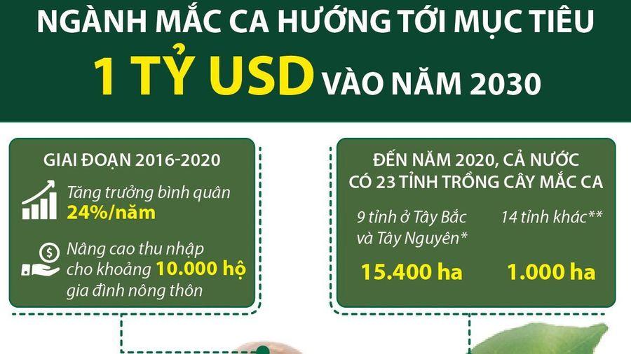 Ngành mắc ca hướng tới mục tiêu 1 tỷ USD vào năm 2030