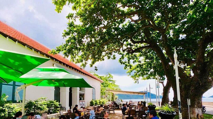 Kỳ 4: Lãng mạn 'pha lẫn trầm tư' ở Cà phê Côn Sơn