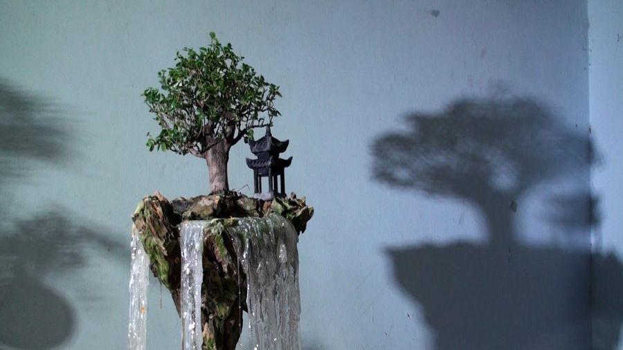 Tiểu cảnh 'hòn đảo bay' như phim viễn tưởng lần đầu xuất hiện ở Hà Nội