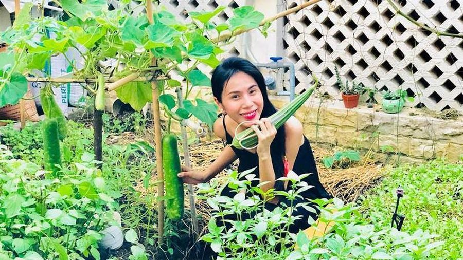 'Nông trại mini' đủ thứ loại rau củ bên trong biệt thự của Thủy Tiên