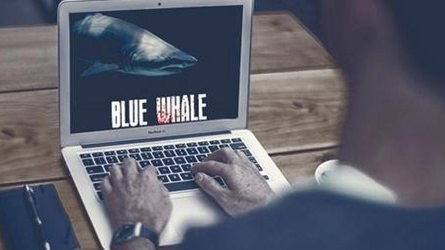 Tránh xa trò chơi cá voi xanh
