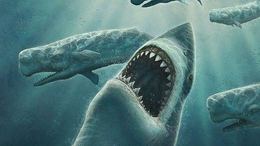 Kinh dị cảnh đầu quái vật biển cổ đại 'mọc' trong hang cổ