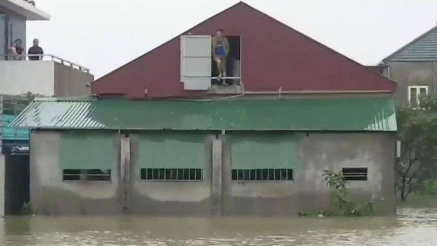 Cuộc sống người dân vùng rốn lũ hồ Kẻ Gỗ nổi trôi giữa dập dềnh sóng nước