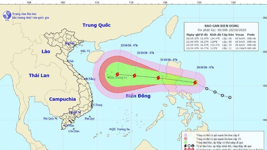 Khuya nay bão Saudel đi vào Biển Đông, cảnh báo những thông tin giả mạo về bão số 8