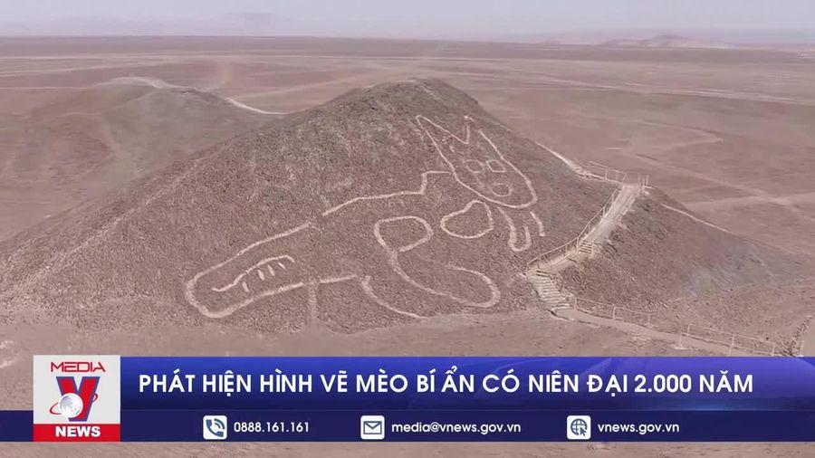 Phát hiện hình vẽ mèo bí ẩn có niên đại 2.000 năm