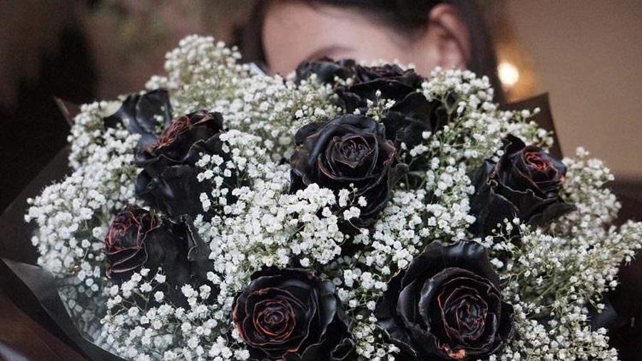 Tiết lộ bất ngờ về hoa hồng đen giá 500.000 đồng/bông được đại gia Hà thành săn lùng