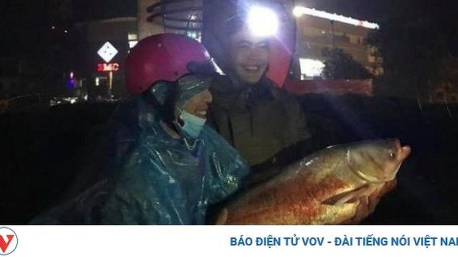 Phố biến thành 'sông', người Hà Tĩnh ra đường bắt cá trong đêm