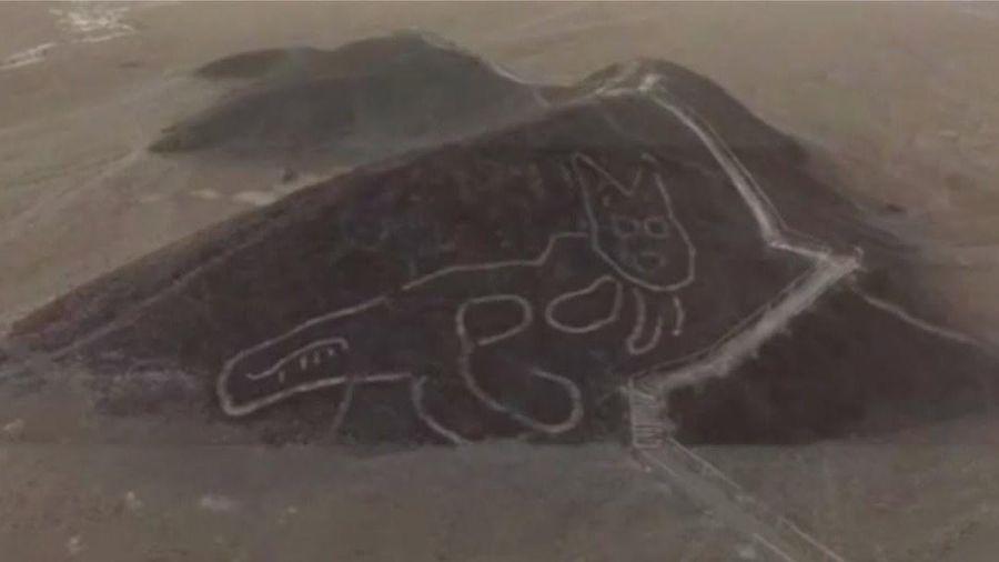 Hình vẽ mèo khổng lồ hơn 2.000 năm tuổi trên sa mạc