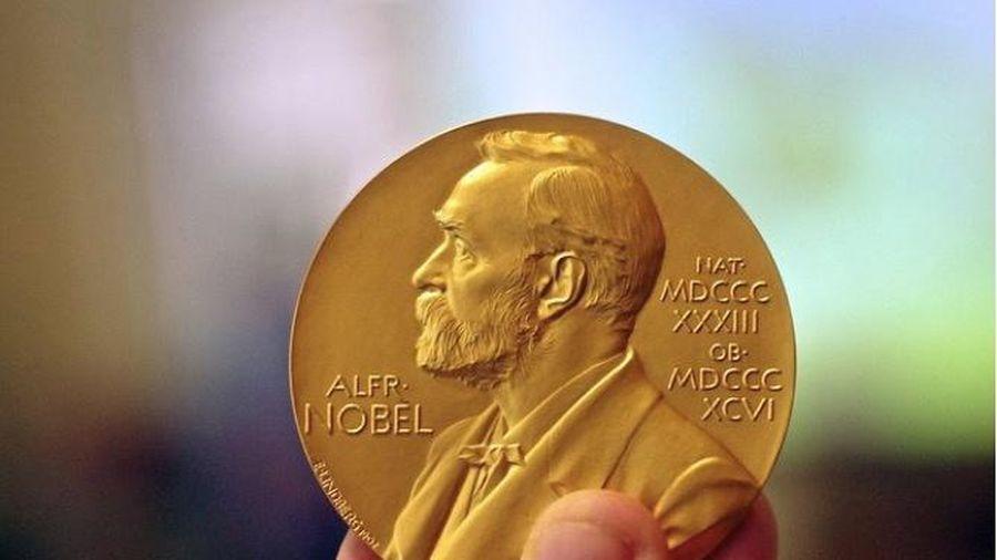 Hội đồng giải Nobel Văn học có hai thành viên mới