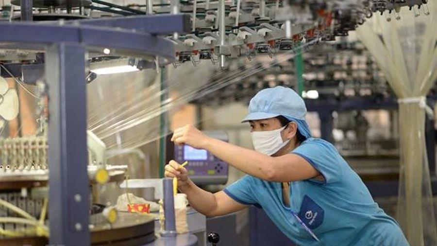 Lãnh đạo Vinatex: Xuất khẩu dệt may có thể giảm 15,3% so với năm 2019