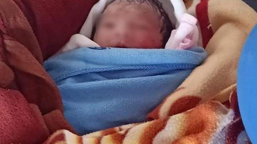 Thái Bình: Khởi tố người mẹ bỏ con sơ sinh ngoài ruộng khoai dẫn đến tử vong